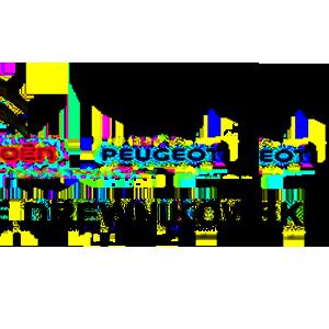 Drewnikowski Peugeot logo